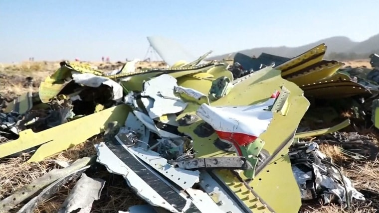 Countries Ground Boeing 737 Max 8 Jet After Ethiopian Airlines Crash