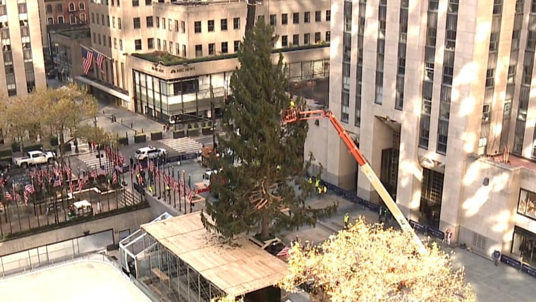 Download Rockefeller Plaza Christmas Tree 2020