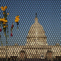 Image: Flowers are woven into the eight-foot-tall steel security fence that continues to encircle the U.S. Capitol