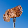 Steak on a Fork