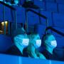 Image: Indoor masks