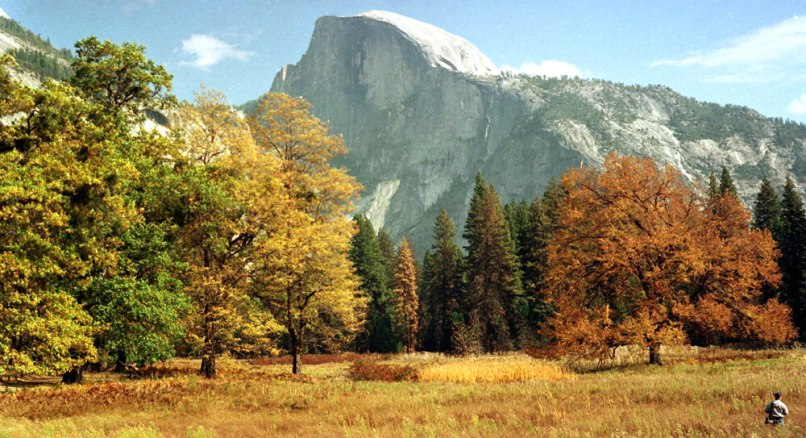 Image: A view of Half Dome from the valley floor of Yosemite National Park
