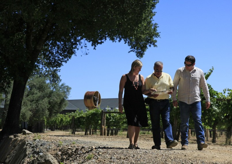 Image: Winery walk