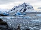 Image:Antarctic Peninsula