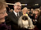 Image: World's Top Dogs Compete At Westminster Dog Show