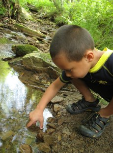 Image: child looking at pond