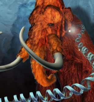 Illustration: Mammoth and DNA