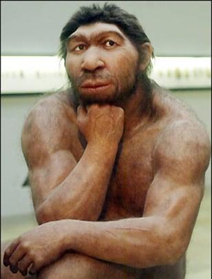 Image: Neanderthal