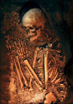 Image: Neanderthal skeleton