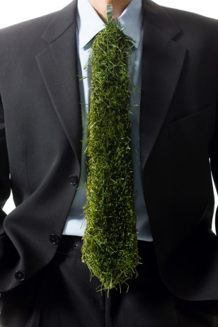 Image: A tie made of grass