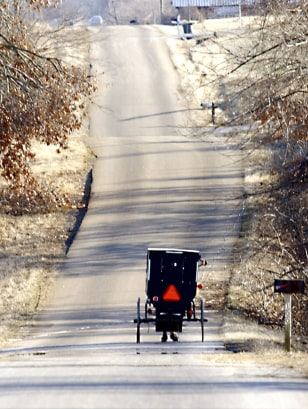 Image: Amish buggy