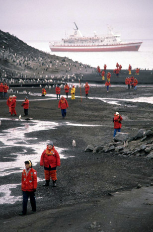 Image: Tourists and penguins in Antarctica