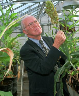 Image: Norman Borlaug