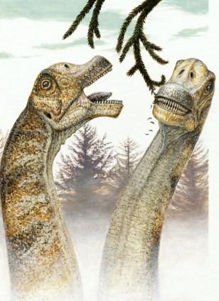Image: Abydosaurus mcintoshi