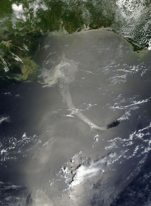 Image: Satellite image of the Gulf of Mexico oil spill