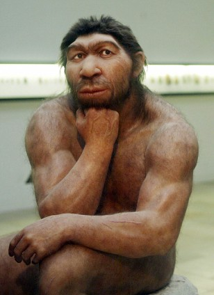 Image: Neanderthal man reconstruction