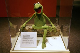 Image: Kermit at the Smithsonian