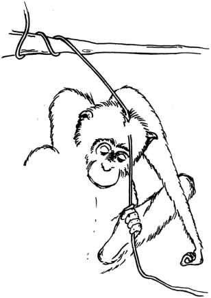 Image: Illustration of chimp with paralyzed hands
