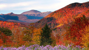 Image: Crawford Notch State Park in New Hampshire