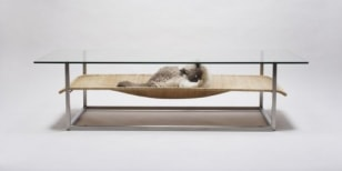 Image: Cat hammock