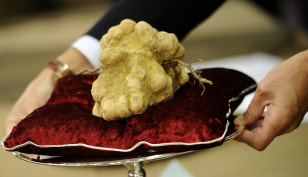 Image: An official presents a truffle on Novemb