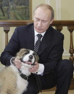 Image: Vladimir Putin with dog, Buffy