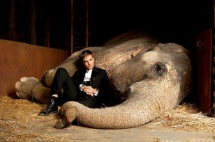Image: Water For Elephants