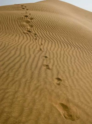 Image: Footprints in sand