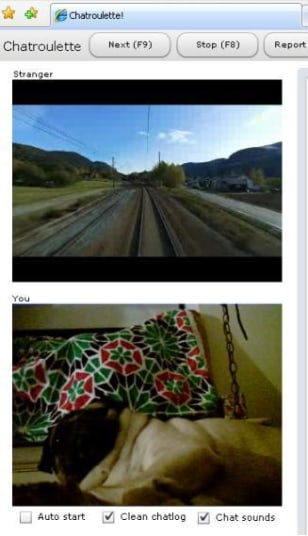 Image: A train in Norway and Charlie the Rescue Pug have an awesome conversation on ChatRoulette.