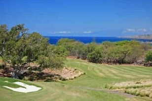 Image: Hawaii home