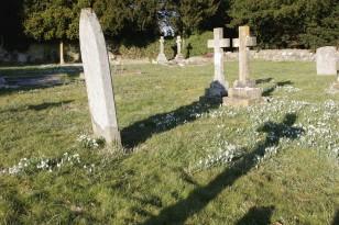 Image: Graveyard