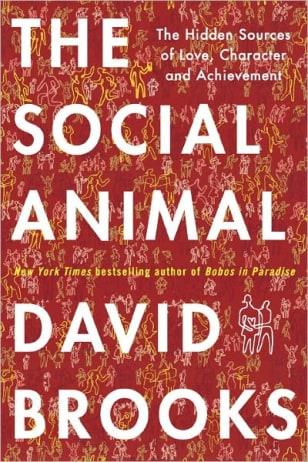 An Excerpt Of David Brooks The Social Animal Meet The Press
