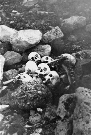 Image: Franklin Expedition skulls