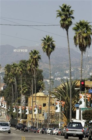 IMAGE: PALM TREES IN LOS ANGELES
