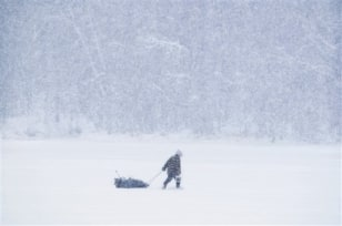 Image: Ice fisherman