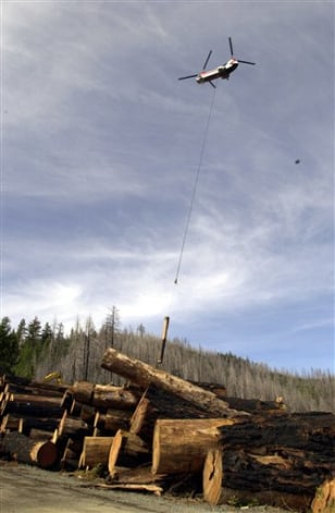 IMAGE: HELICOPTER HAULS LOGS FROM ROADLESS FOREST