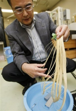 IMAGE: SPAGHETTI MODULES FOR CARBON STORAGE