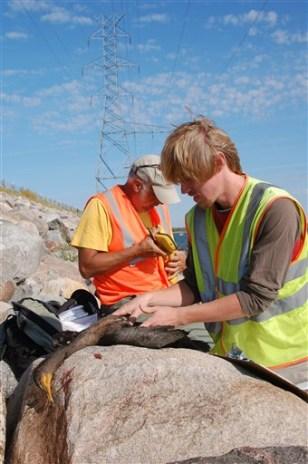 Image: Biologists inspect dead bird