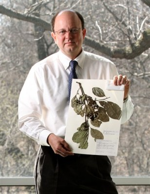 Image: Tree DNA