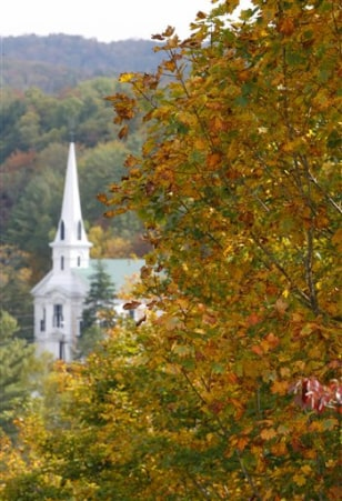 IMAGE: TREES IN VERMONT TOWN