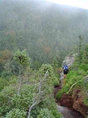 Image: Appalachian Trail