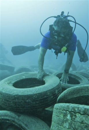 Image: Florida tire reef