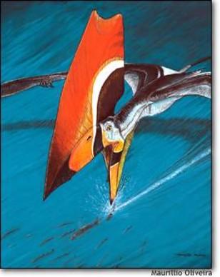 Image: Pterosaur from Brazil