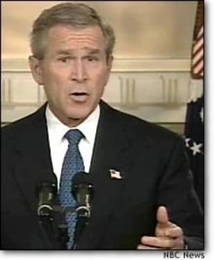 IMAGE: President Bush in televised address