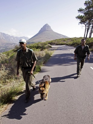Image: Patrols on Signal Hill