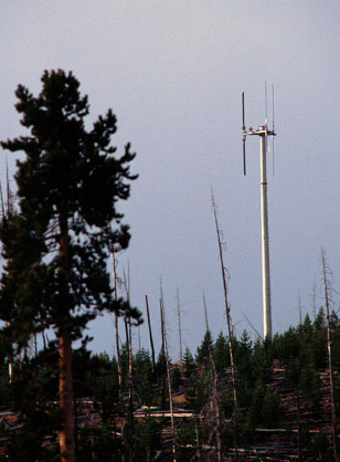 Image: a cell phone tower in the vicinity of the Old Faithful geyser in Yellowstone National Park