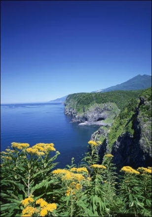 Image: The Japanese island of Hokkaido