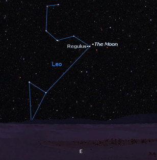 Image: Regulus in Leo