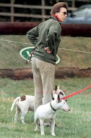 IMAGE: PRINCESS ANNE AND HER ENGLISH BULL TERRIERS