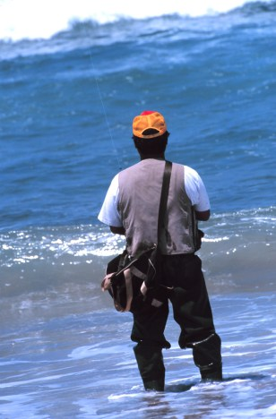 SALTWATER FISHERMAN